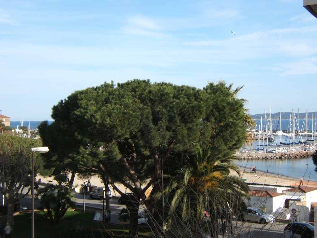 http://www.immosaintemaxime.fr/photo2/1031/1031240720131744470.jpg