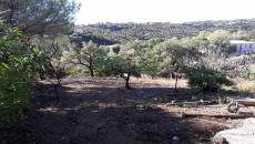 FOR SALE LES ISSAMBRES BEAUTIFUL LAND OF 1386 M�. COS 0.20 VIEW COUNTRY